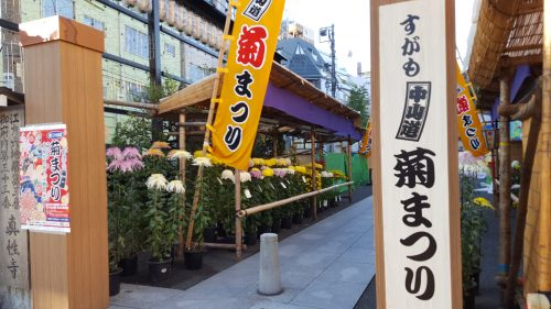 28th Sugamo Nakasendo Chrysanthemum Festival